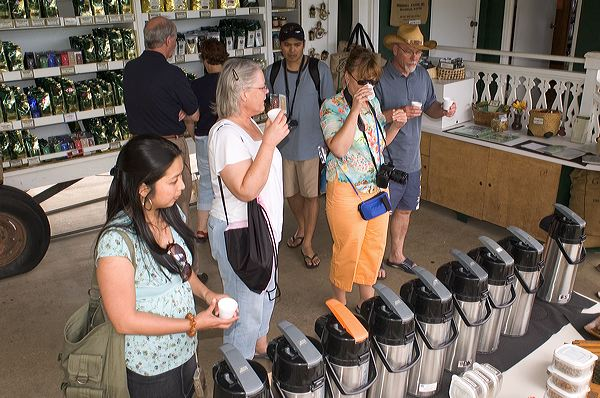 Visitors Tasting Kona Coffee