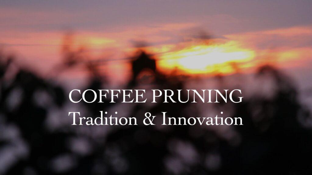 Coffee Pruning