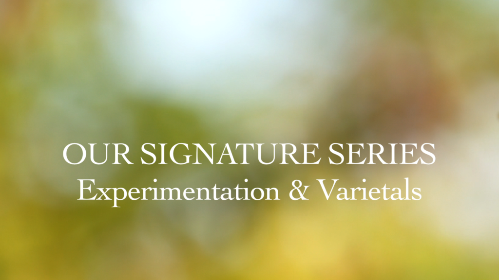 Our Signature Series - Experimentation & Varietals
